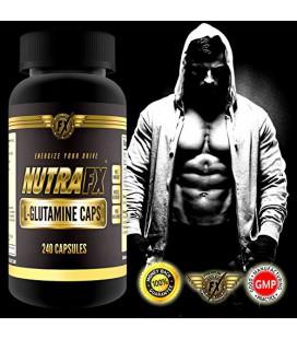 Nutrafx GLUTAMINE Capsules - nutrition sportive après l'entraînement ~ ~ Supporte récupération après l'exercice de la fonction