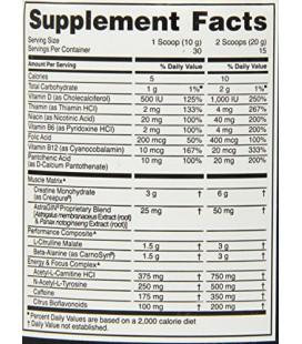 Or Optimum Nutrition standard pré-entraînement 30 Servir Supplément, Fruit Punch, 300 Gramme