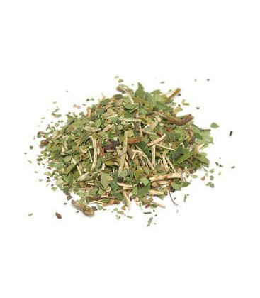 Pipsissewa Herb Wildcrafted Cut & Sifted - Chimaphila umbell