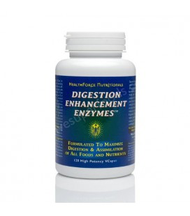 Healthforce Digestion Enhancement Enzymes, Vegancaps, 120-Count