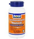 Saccharomyces Boulardii - 60 - Veg Cap