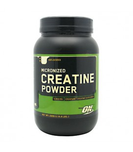 Optimum Nutrition Micronized Creatine Powder Unflavored - 2000 g (4.4 lbs)